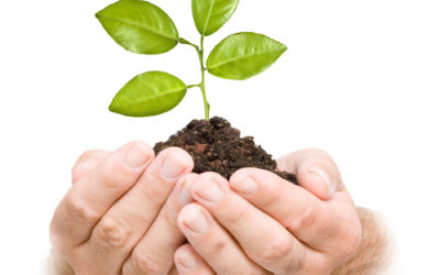 Agronegocios: crece el marketing en el sector.