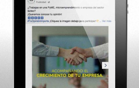 Pauta Digital · ASN Consultora